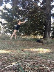 Harvesting fun